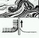 有機エレクトロニクス~液晶からトランジスタまで~