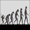 進化するソフトウェア